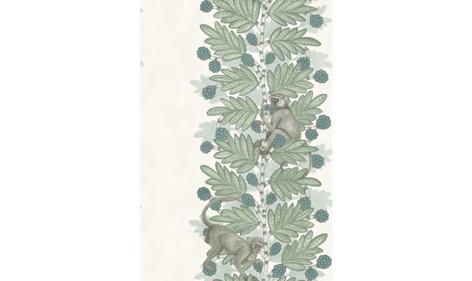Acacia 109-11052 Product Image