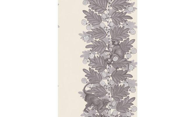 Acacia 109-11053 Product Image