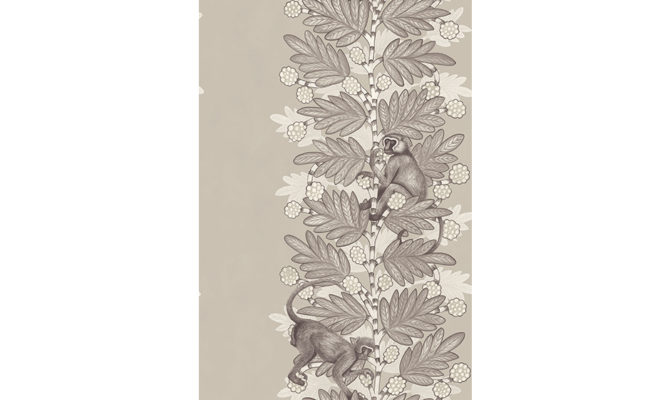 Acacia 109-11054 Product Image
