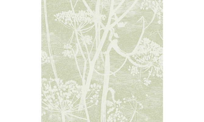 Cow Parsley 112-8029 Product Image