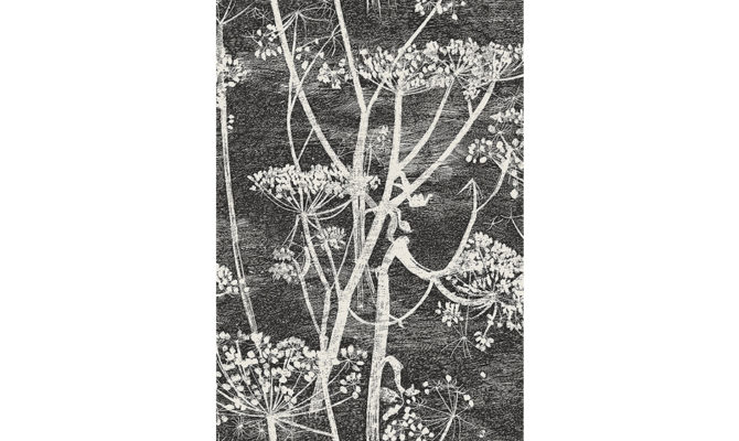 Cow Parsley 66-7046 Product Image