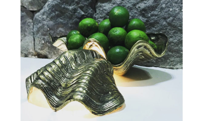SEA CLAM – BRASS CLAM SHELL BOWL (LARGE) Product Image