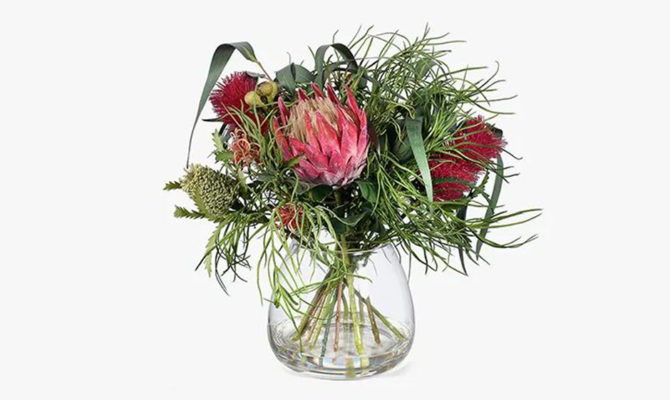 Banksia Mix in Vase Product Image
