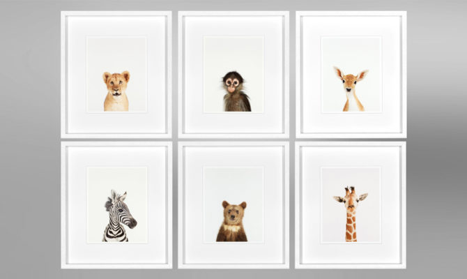 ANIMAL PRINTS 3 (SET OF 6) – AP003 Product Image